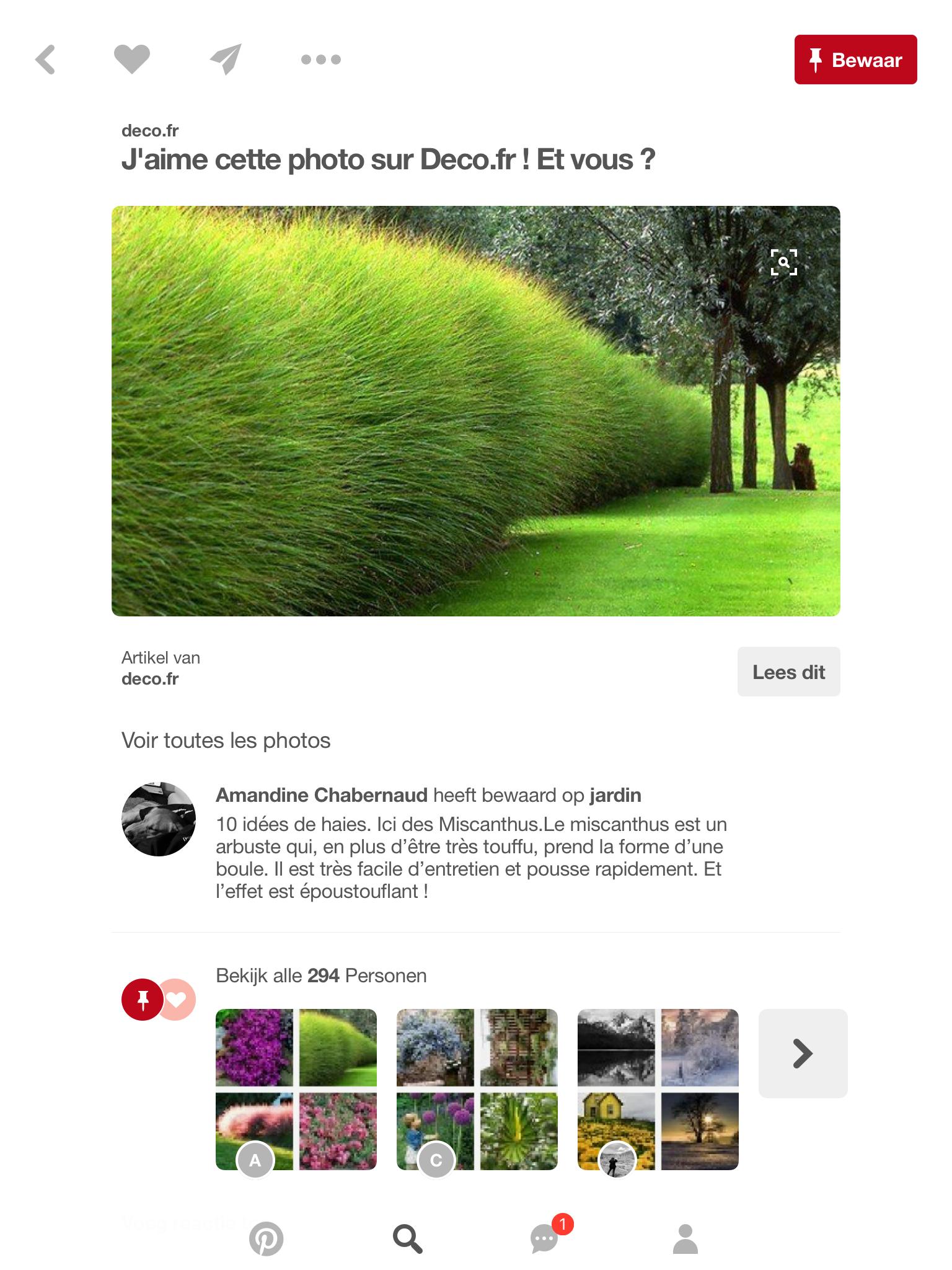 2a0d5b0491128eda1fc895a246e45abf Meilleur De De Boule Deco Jardin Des Idées