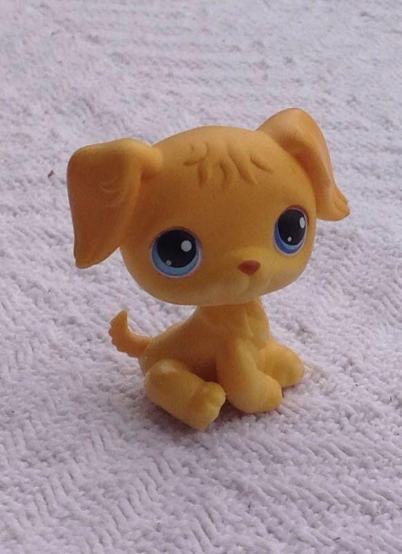 Littlest Pet Shop Golden Retriever Dog Puppy Blue Eyes 21 Littlest Pet Shop Pet Shop Dogs Golden Retriever