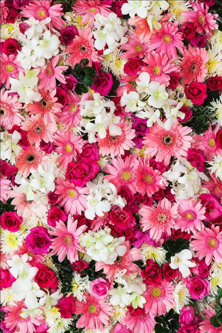 Floral Flower Wallpapers Iphone Android 壁紙 花 花 壁紙 おしゃれな壁紙背景