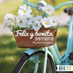 ¡Inicio de semana! Que tengas una feliz y bonita semana. #LunesSaludable #SaludyBienestarBagó