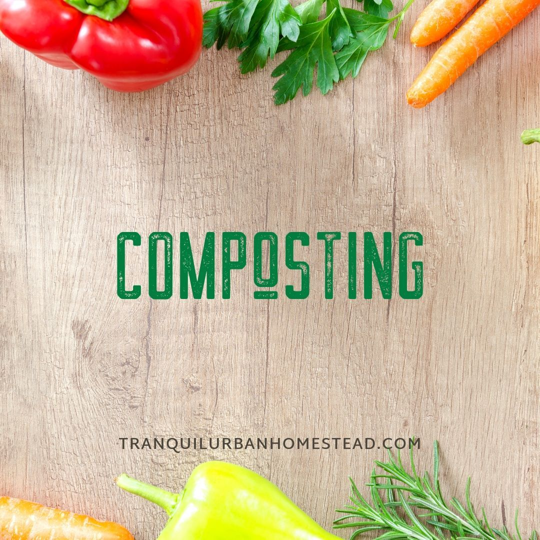 How To Plan Out The Best Place To Put A Compost Bin