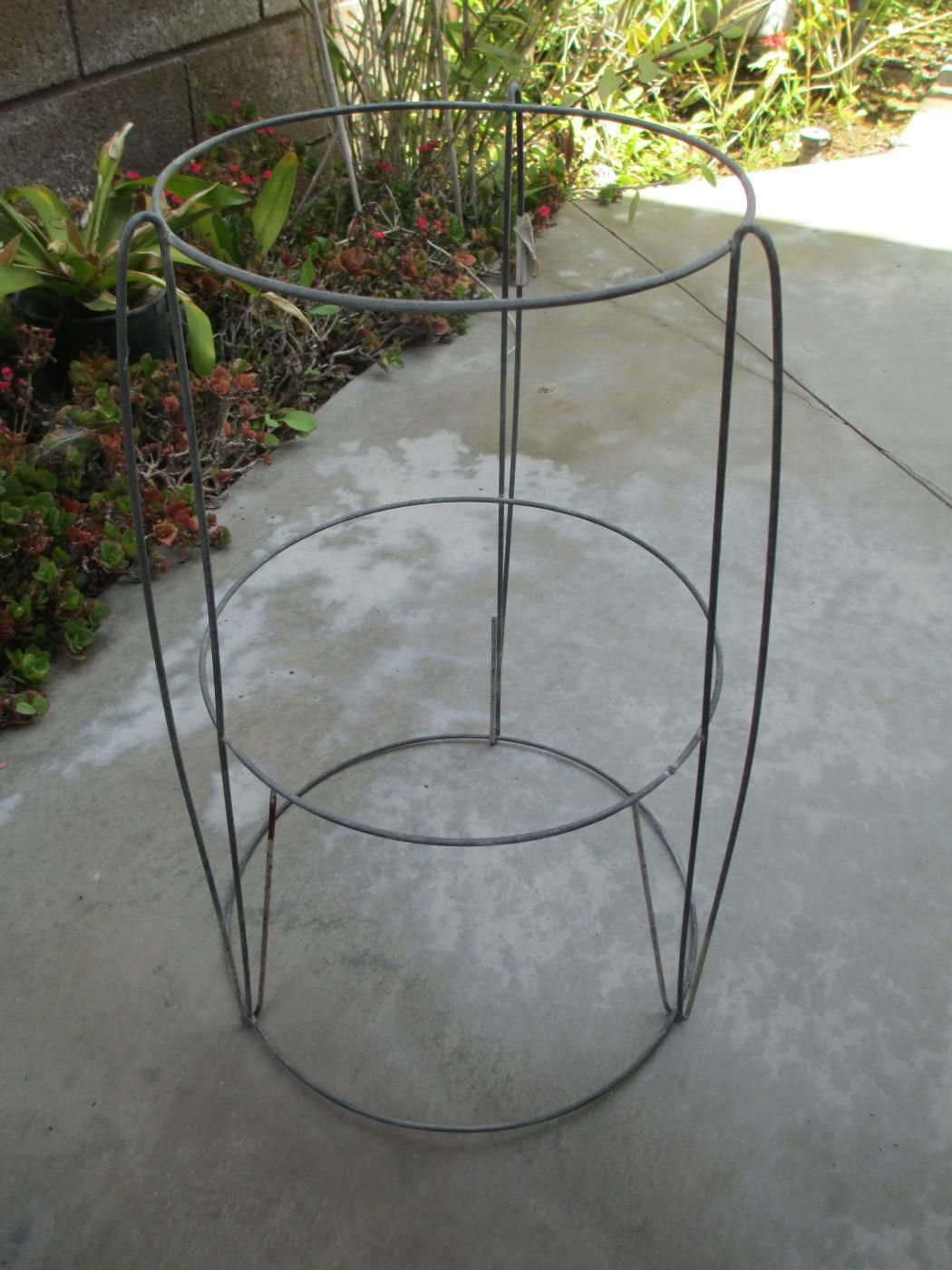 DIY Plant Stand Using Steel Wire Round Tomato Cage | Pinterest ...