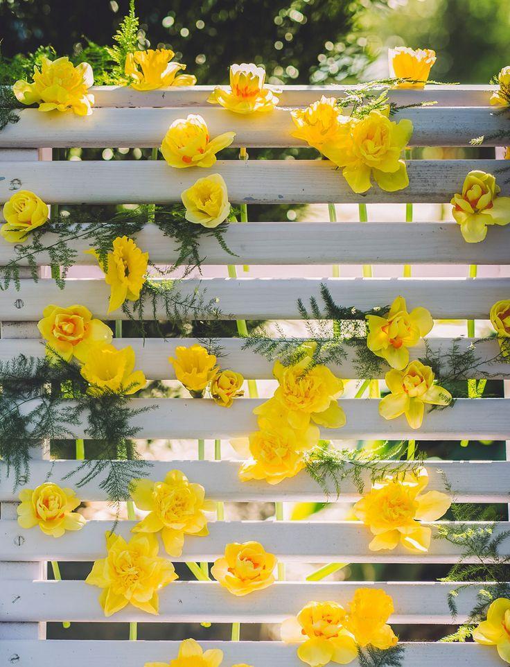spring wedding daffodil wall decor
