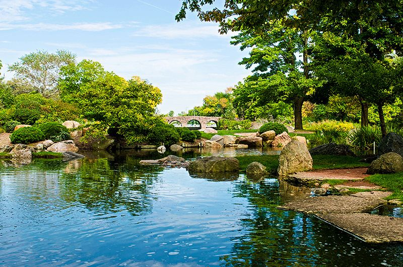Chicago\'s Osaka Garden located in Hyde Park! #osakagarden ...
