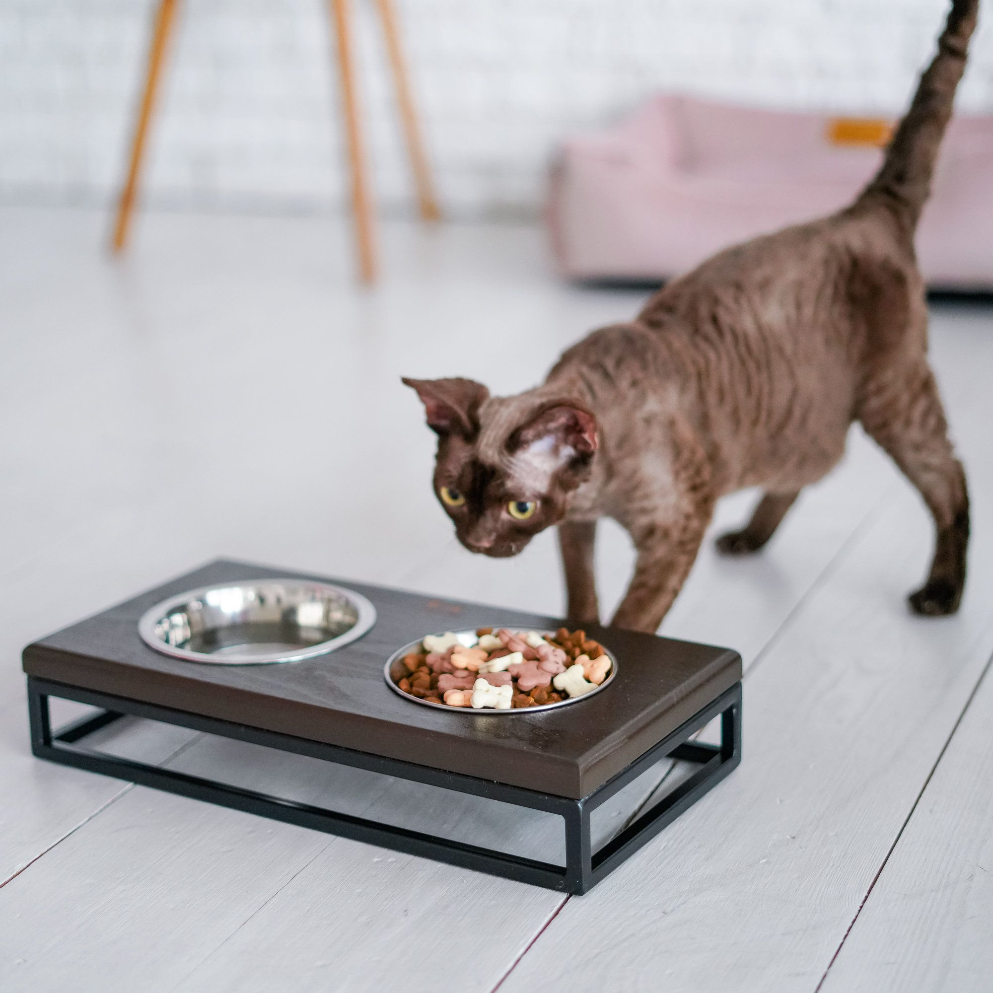 Cat Bowls Stand For Water And Food Wooden Eco Friendly Feeder For Modern Home Stable Black Metal Base And Wooden Top Small Size Cat Bowl Tovary Dlya Zhivotnyh Zhivotnye