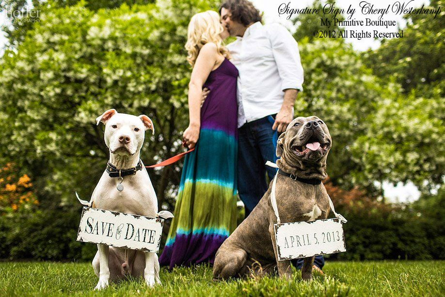 engagement photos with dog ideas | dapper wedding accessories for your dog save the date signs | OneWed ...