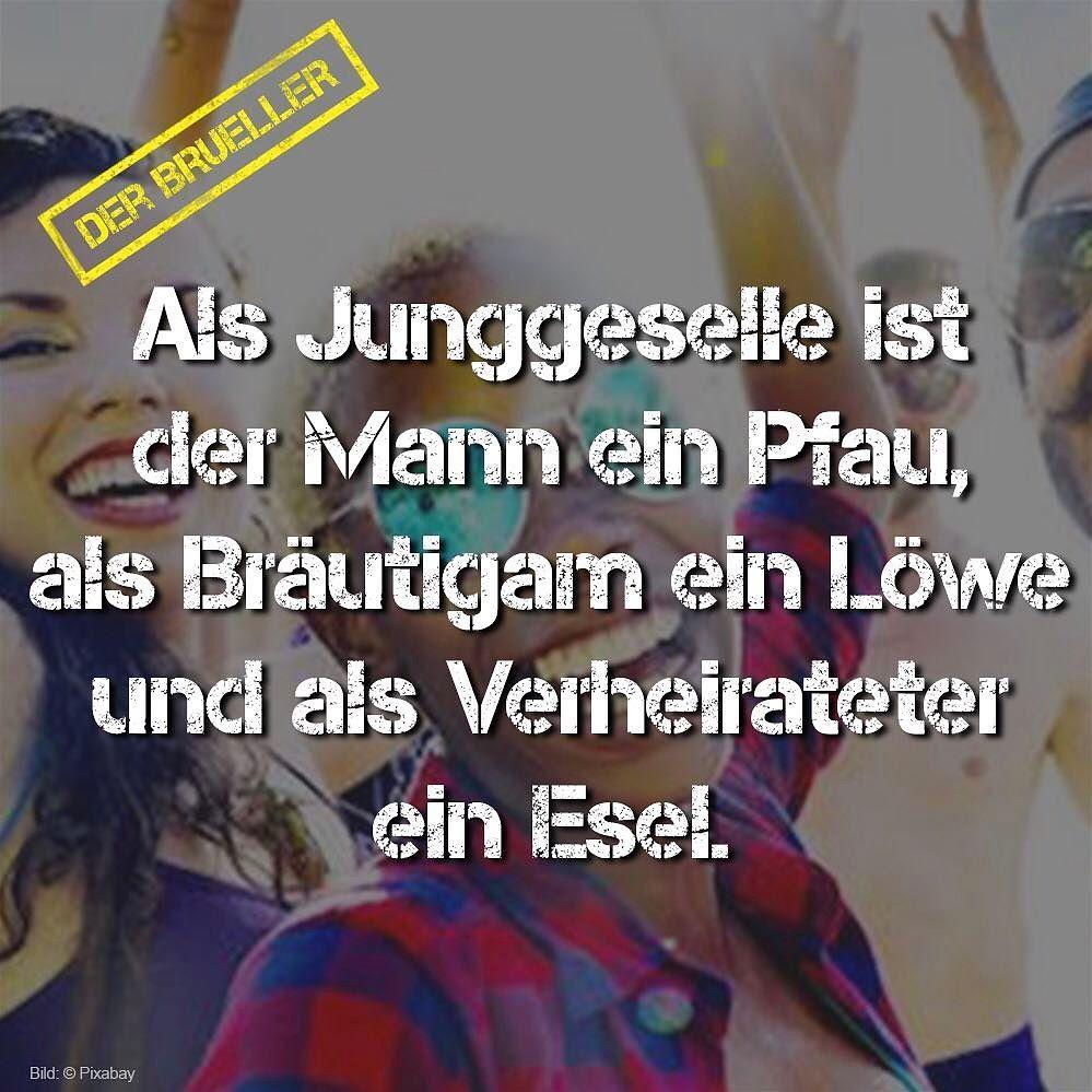 tipp #passwort #leben #life #humor #brüller #spruch #sprüche
