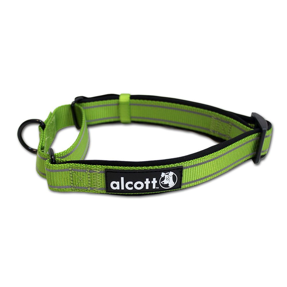 Funwithalcott Alcott S Martingale Collars Are Perfect For Traveling With Pets A Properly Fitted Martingale Collar Keeps D Pet Travel Gear Martingale Dog Gear