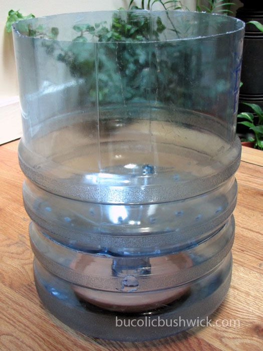 Diy Self Watering Container From A 5 Gallon Water Cooler