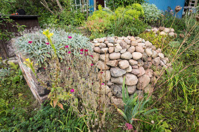 Steinhaufen oder Trockenmauer anlegen - NABU