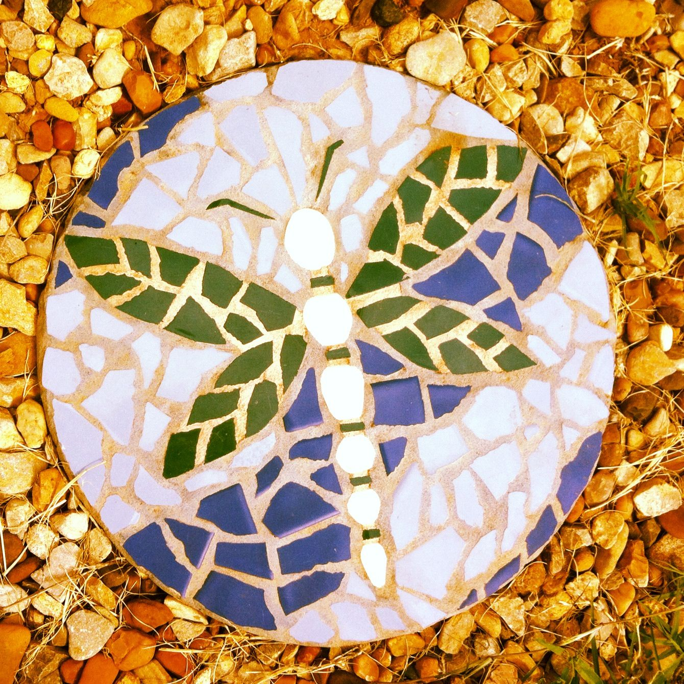 Dragonfly stepping stone in rock garden | projects and ...