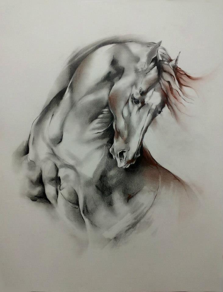 2016/05/29 Horse - Sophie Dumas