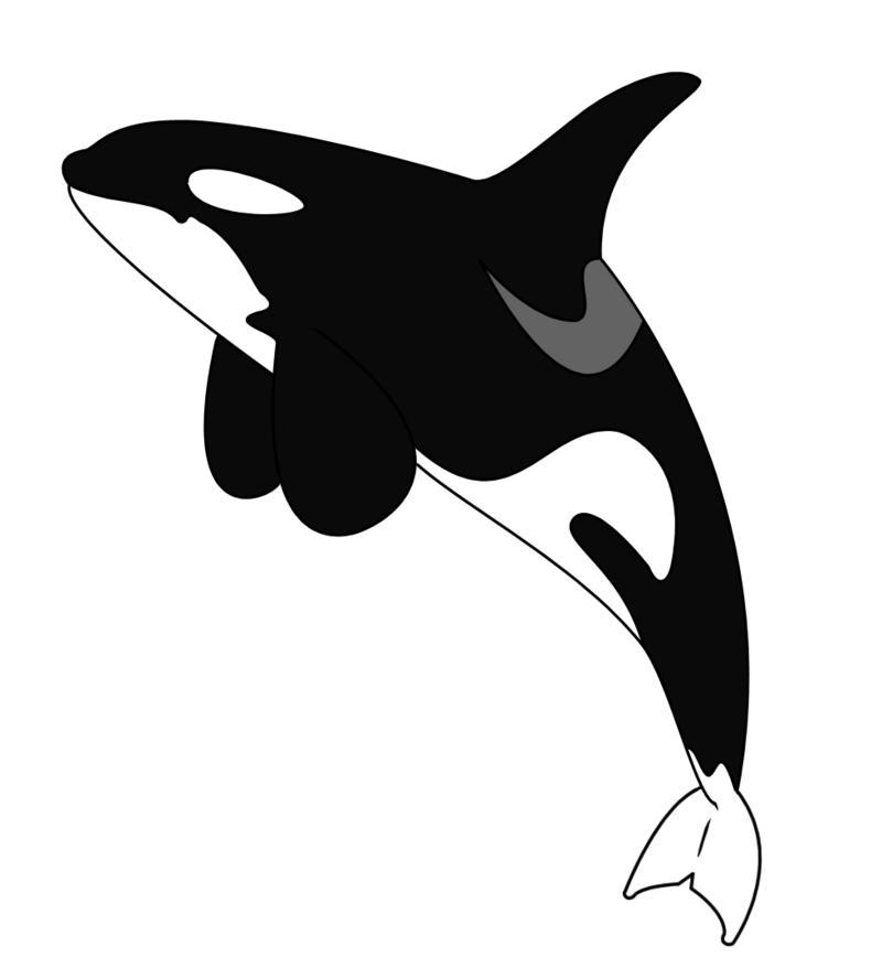 Orca tattoo - version one by GlitzyChan.deviantart.com on ...