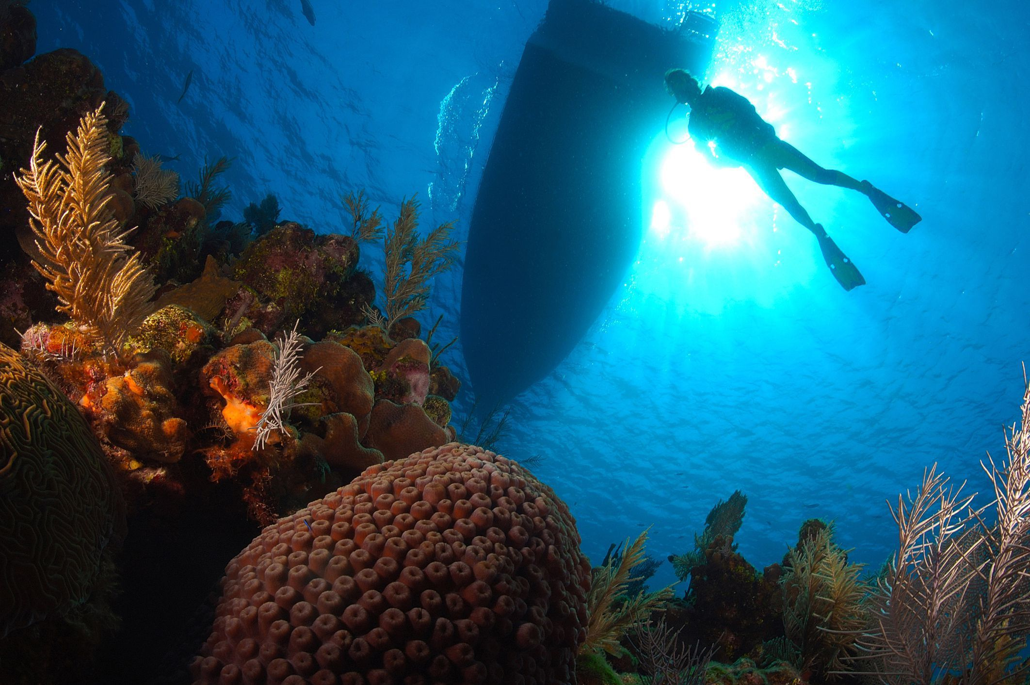 6 of the World's Cheapest Places to Get Scuba Certified