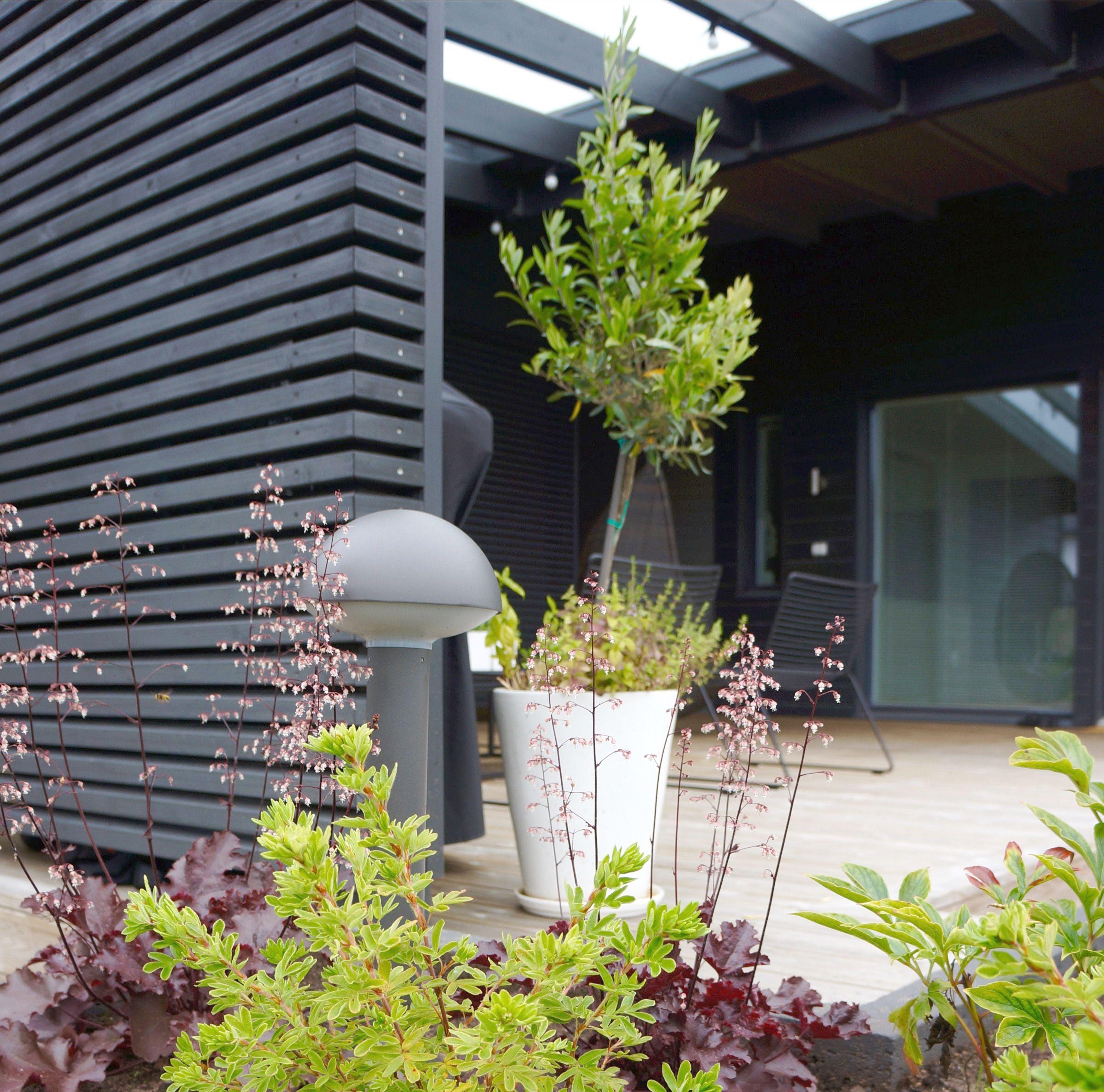 Landscape Gardening Courses Near Me, Landscape Gardening ... on Backyard Landscape Designers Near Me id=85629
