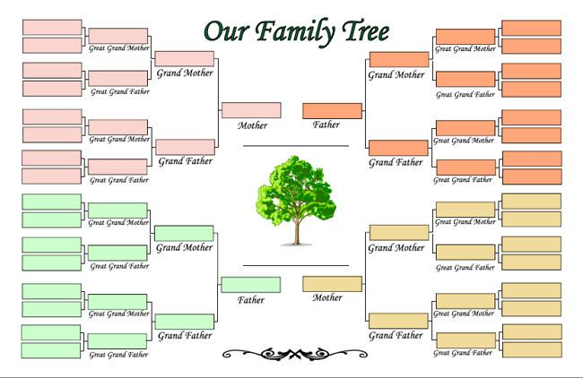 image regarding Printable Family Tree Maker named Printable Relatives Tree Producer template Blank family members tree