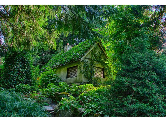 A Fairy House In The Woods (Canada)
