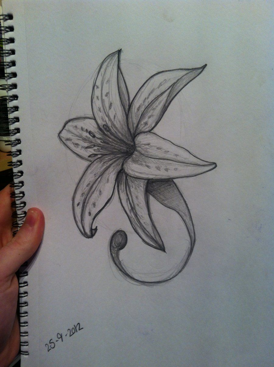 Lily flower tattoo designs meanings ink pinterest lily lily flower tattoo drawing flower tattoo design by hobojay designs interfaces tattoo design 2013900 x 1205 dhlflorist Images