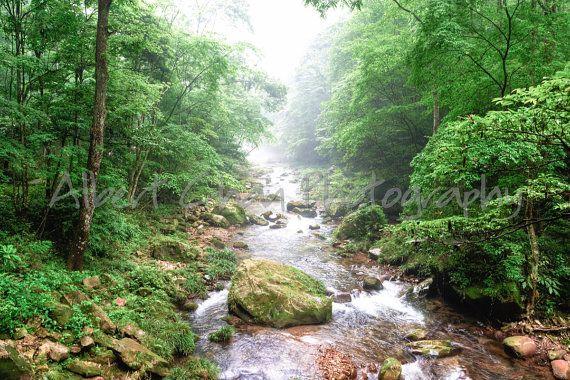 Fine art print  beautiful creek or brook in by dixielanddelight, $20.00