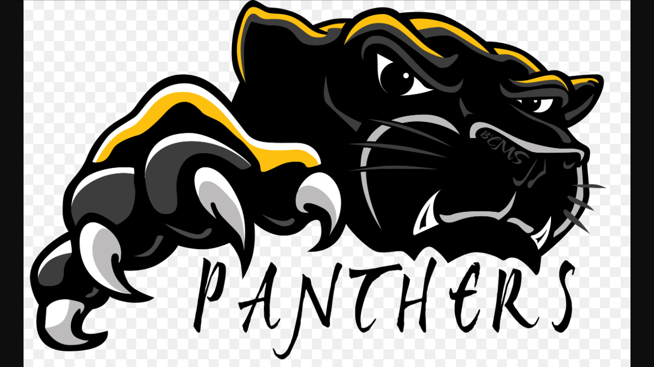 Pin By Heather Gilmore Carchidi On Century Panthers Football Panther Images Panther Logo Panther Shirts