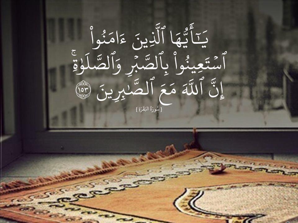 Pin Von م ع ا ف ي ح ب م ح م د ﷺ Auf رمضان كريم Hintergrundbilder Hintergrund Bilder