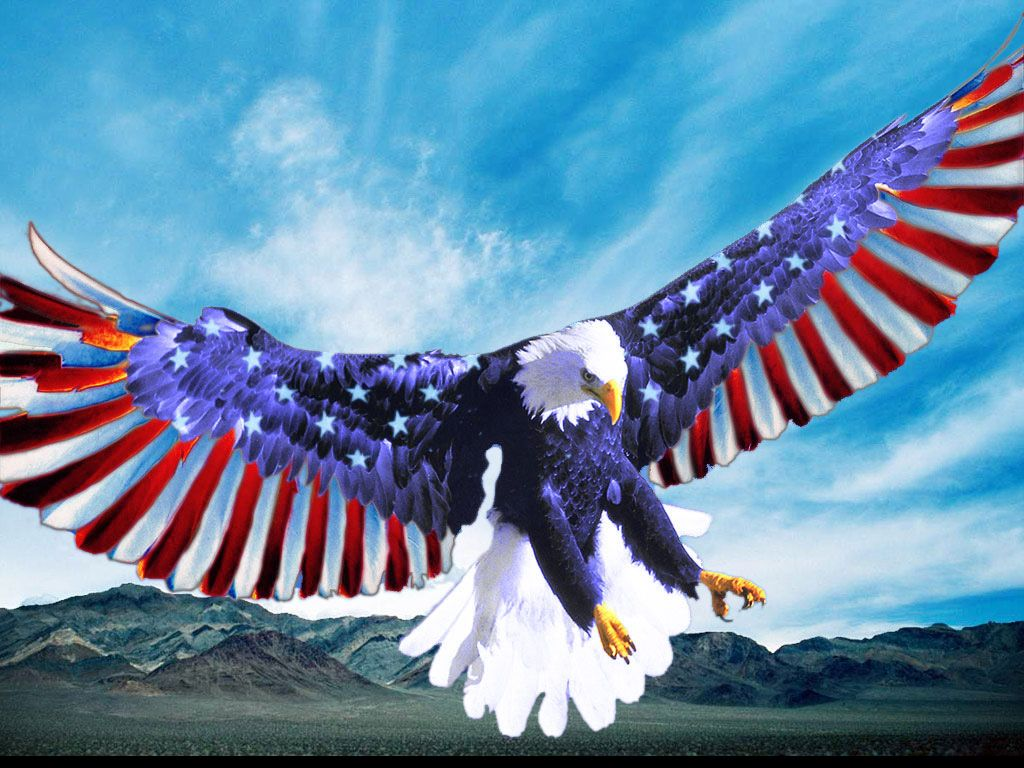 0ee4a8397e168 Red White and Blue Bald Eagle American Flag Image Great places to go and  things to do in the USA