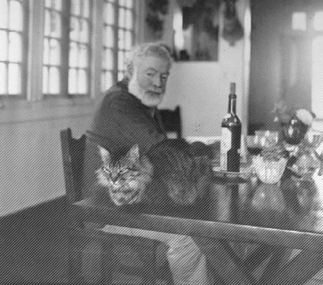 Hemingway wine cat
