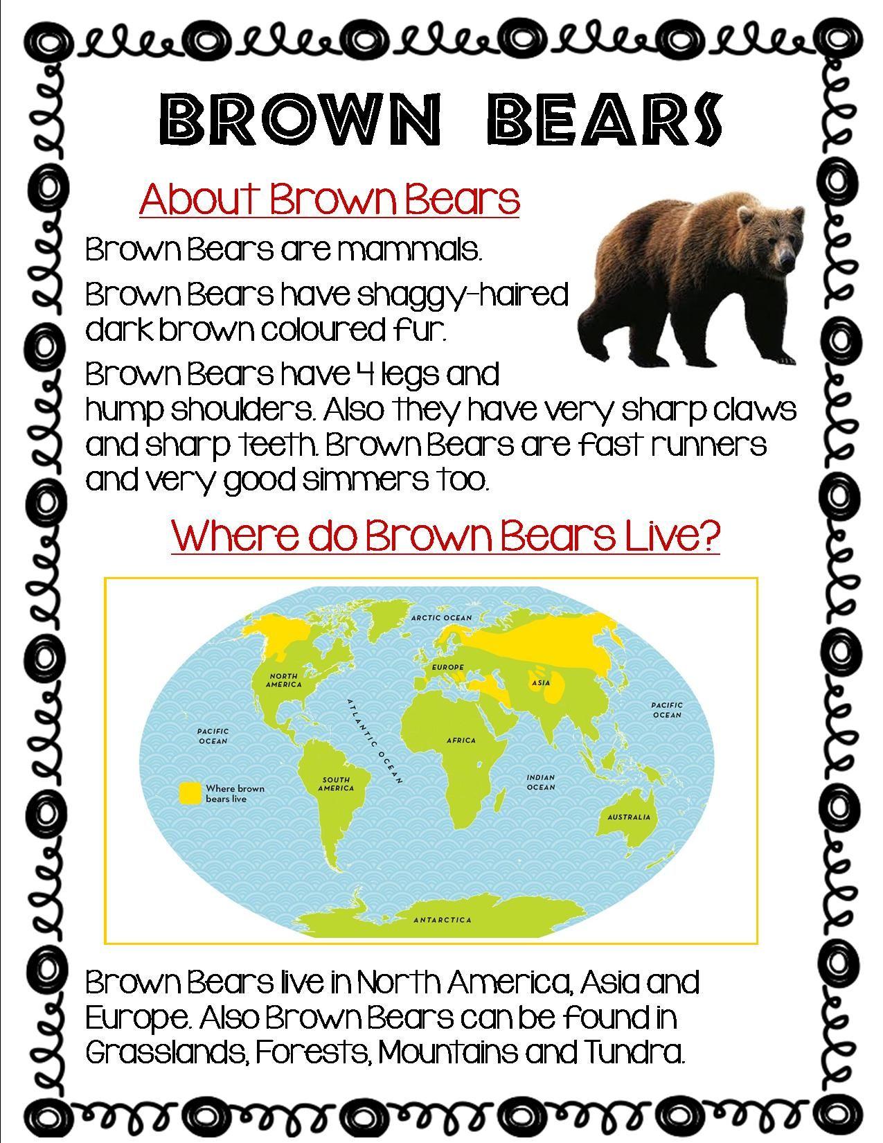 medium resolution of Pin on Polar bear project