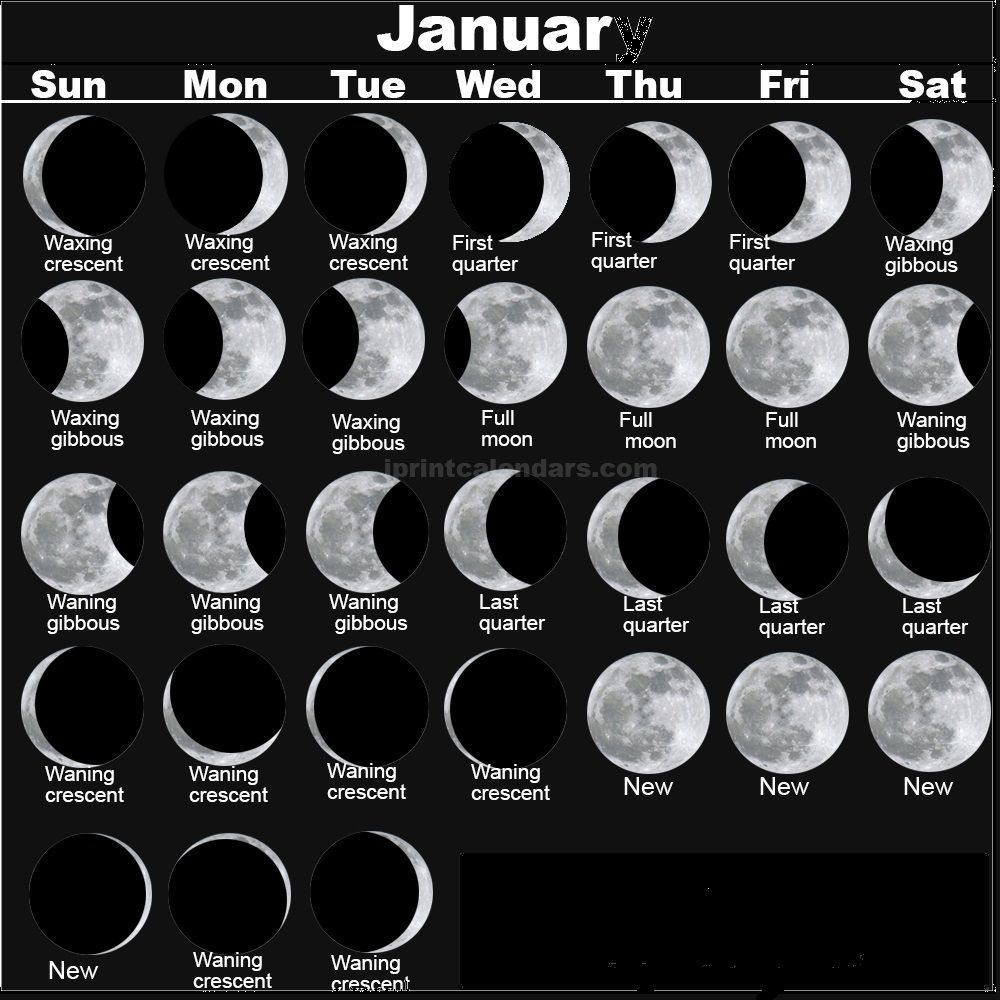 Moon Calendar 2019 January Month Full New Moon Phases Moon