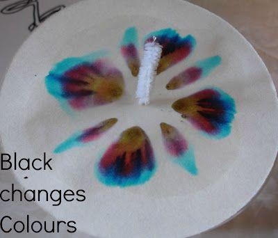 2 Big, 2 Little: Black Changes Colour?