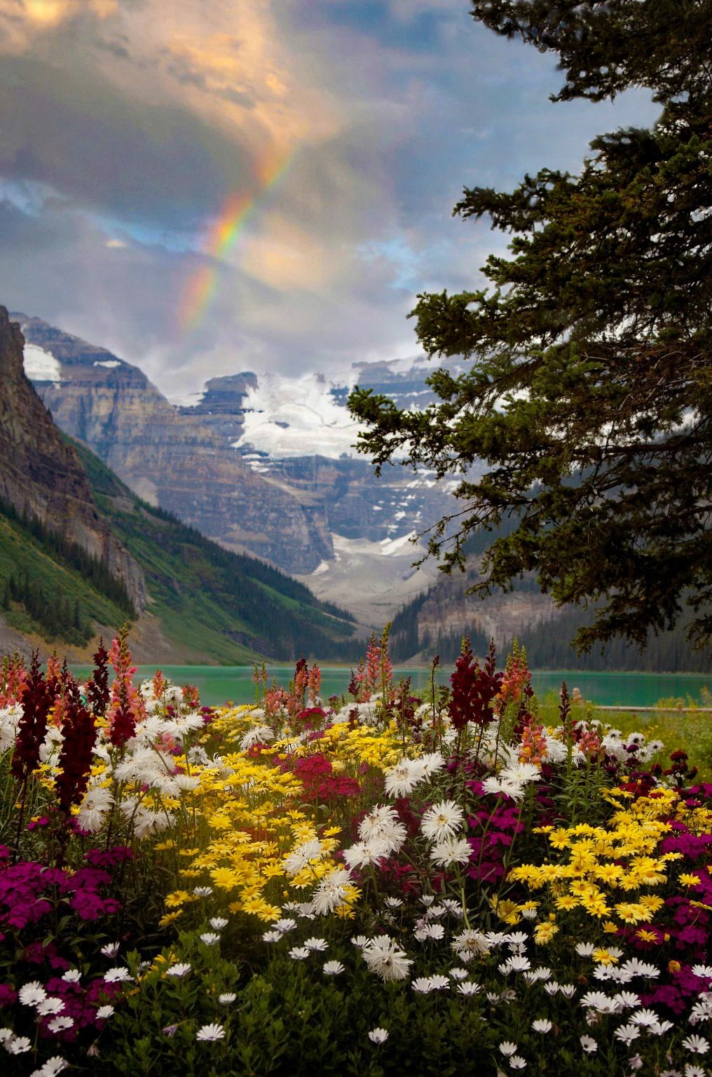 Lake Louise At Banff National Park In Alberta Canada Best Time To Visit