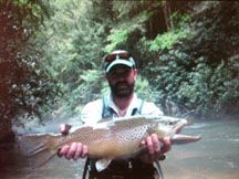 Fly Fishing Georgia Brigadoon Lodge Fish Fly Fishing Best Vacations