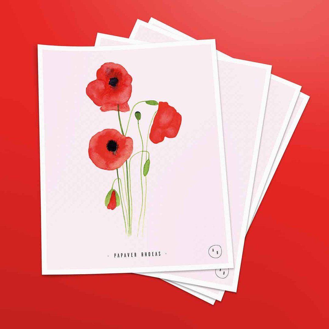 Art Print Mohnblume Andbuttercups Mohnblume Aquarell Postkarte Blumen