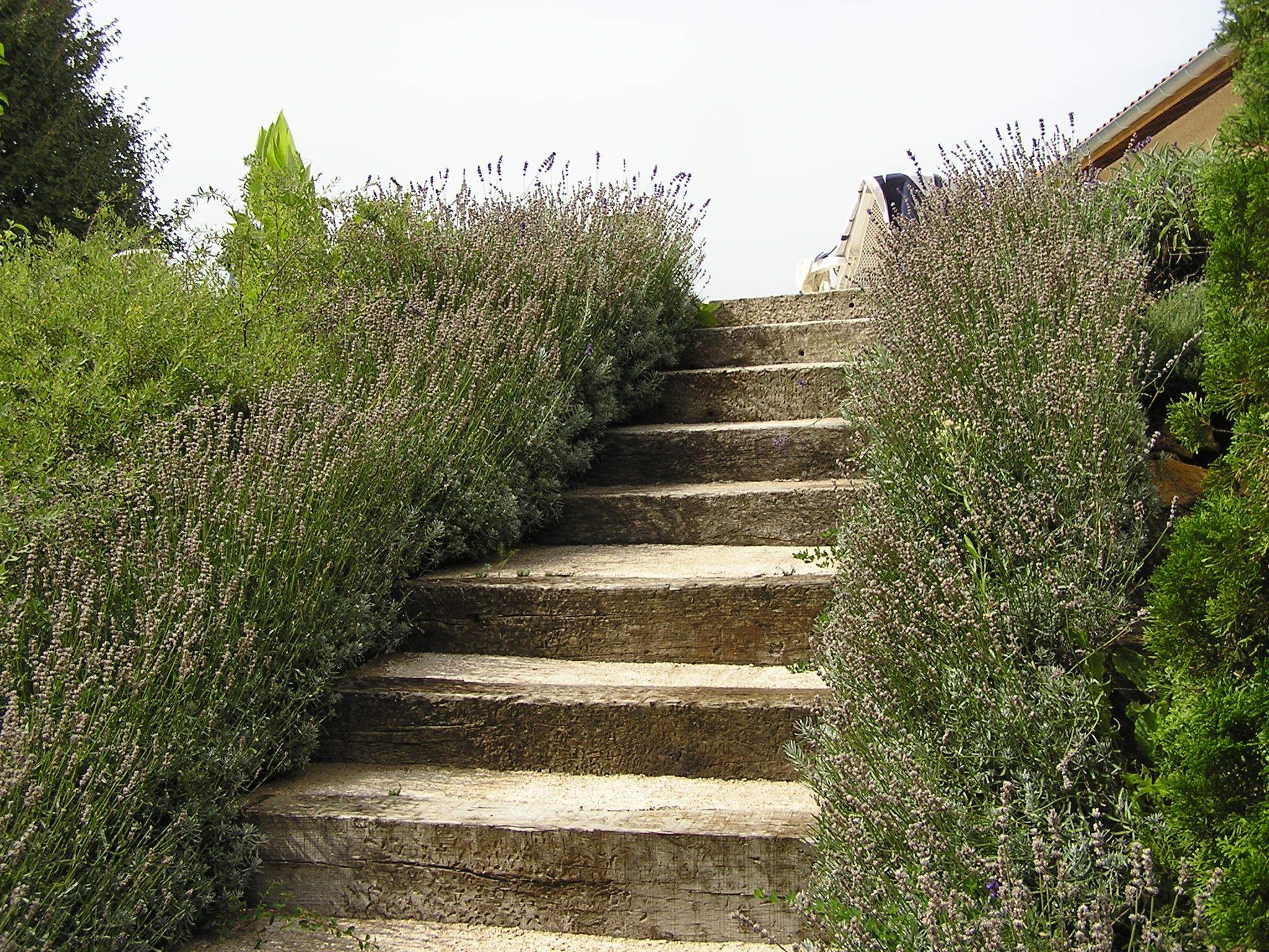 afficher l 39 image d 39 origine jardinage pinterest talus escalier ext rieur et escaliers. Black Bedroom Furniture Sets. Home Design Ideas
