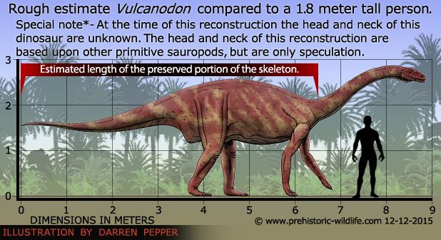 Vulcanodon size comparison