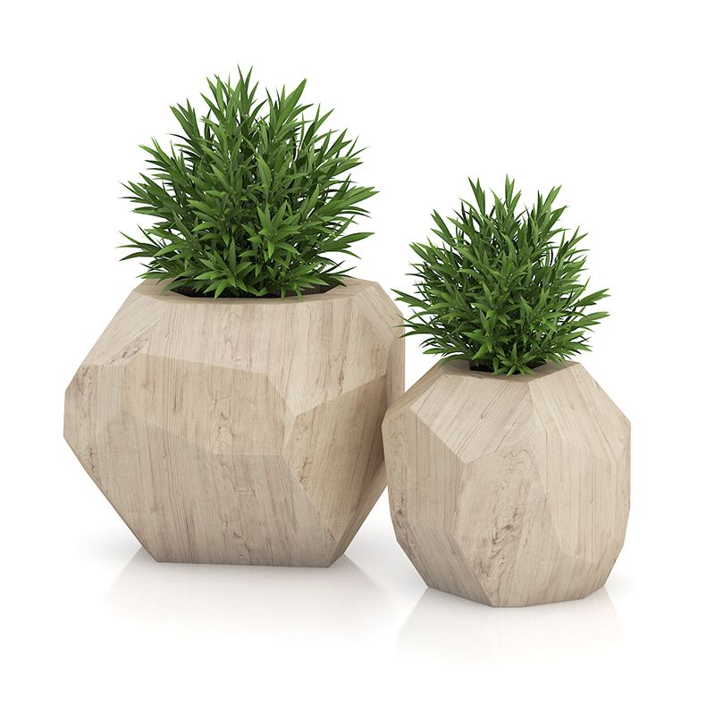 Two plants in modern wooden pots plant pots pinterest for Modern indoor plants