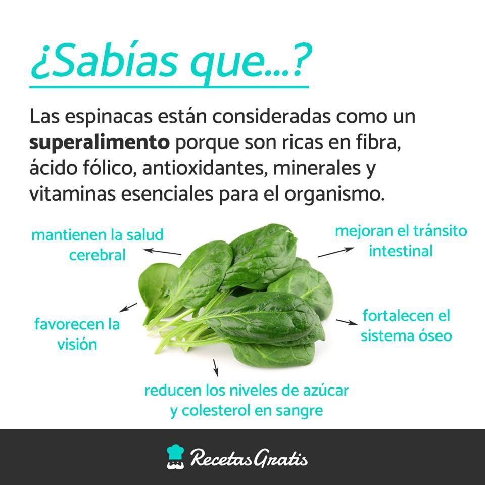Si No Conocías Todos Los Beneficios De Las Espinacas Ya Puedes Empezar A Incluir Este Vegetal Frutas Y Verduras Beneficios Beneficios De Alimentos Nutrición