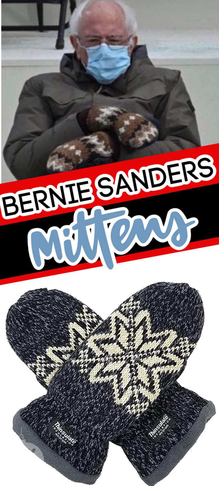 Everyone Wants Bernier Sanders Mittens Here S Where You Can Get Some In 2021 Mittens Moms Inspiration I Can Do It
