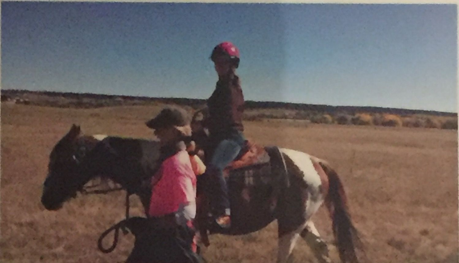 This Was A Day In My Life Volunteering At Promise Ranch