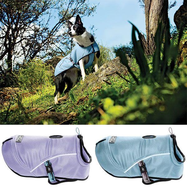 Hurtta America Cooling Dog Vest Mit Bildern Hundeschule Tipps