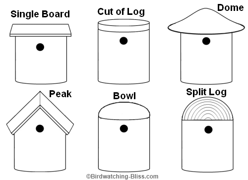 Types of roof birdhouse loving the birds and wild for Different types of birdhouses