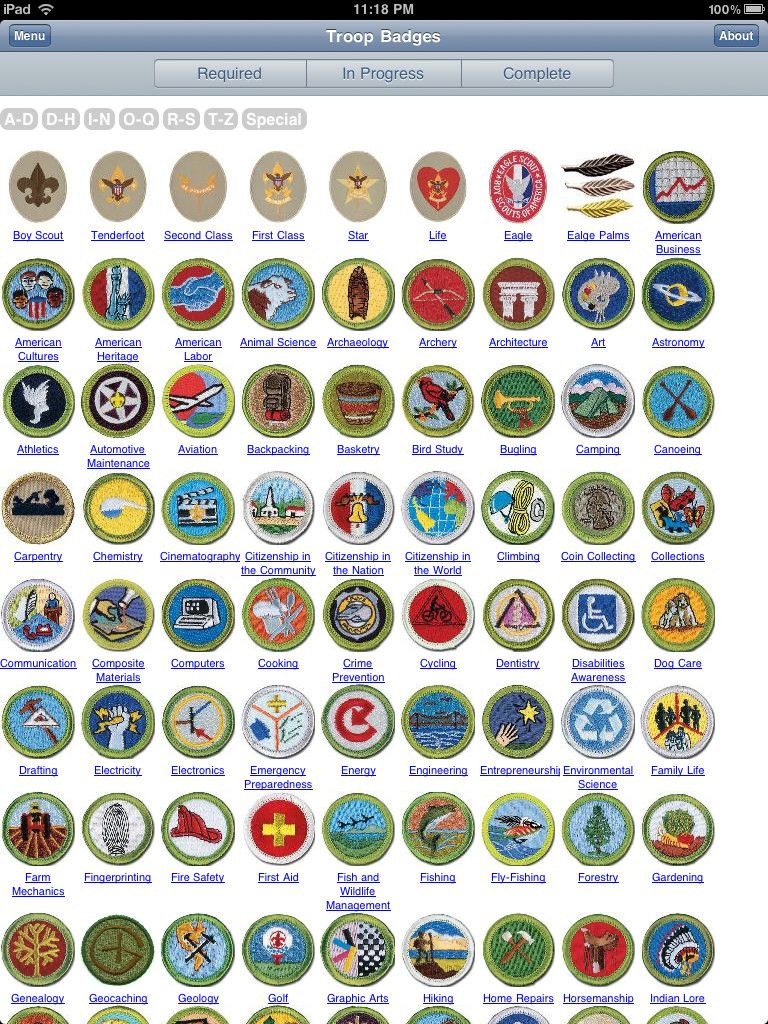 merit badges boy scouts