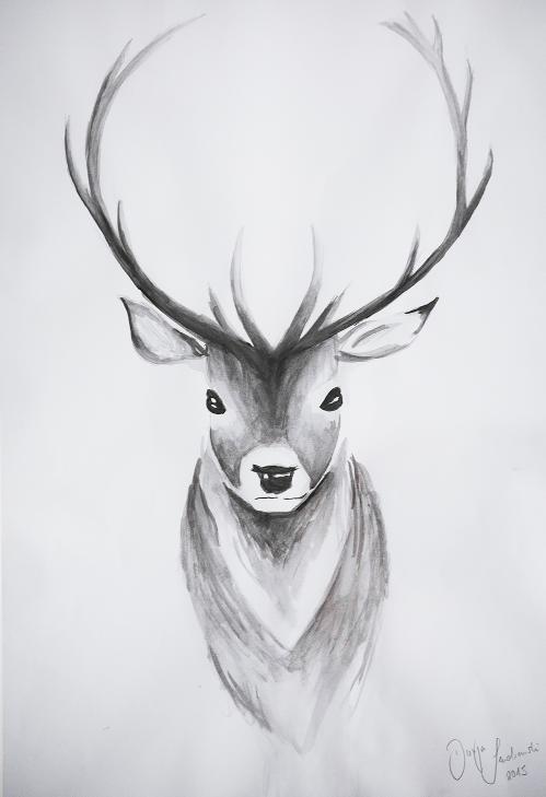 Hirsch Zeichnung Drawing Tutorial Deer Drawings Paintings And