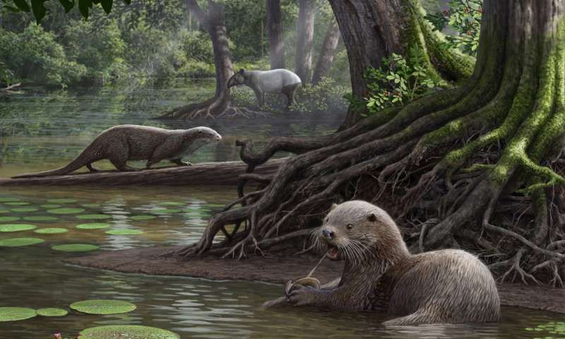 Ancient Otter Packed A Surprisingly Strong Bite Otters