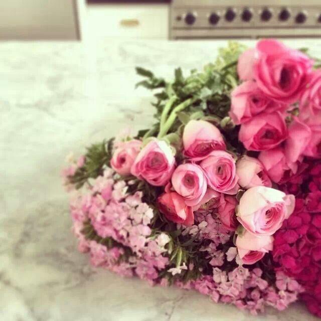 Rosa, rosae, rosas