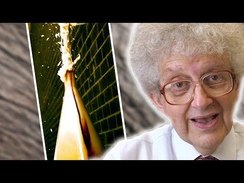 Elephants Toothpaste Slow Motion Periodic Table Of Videos