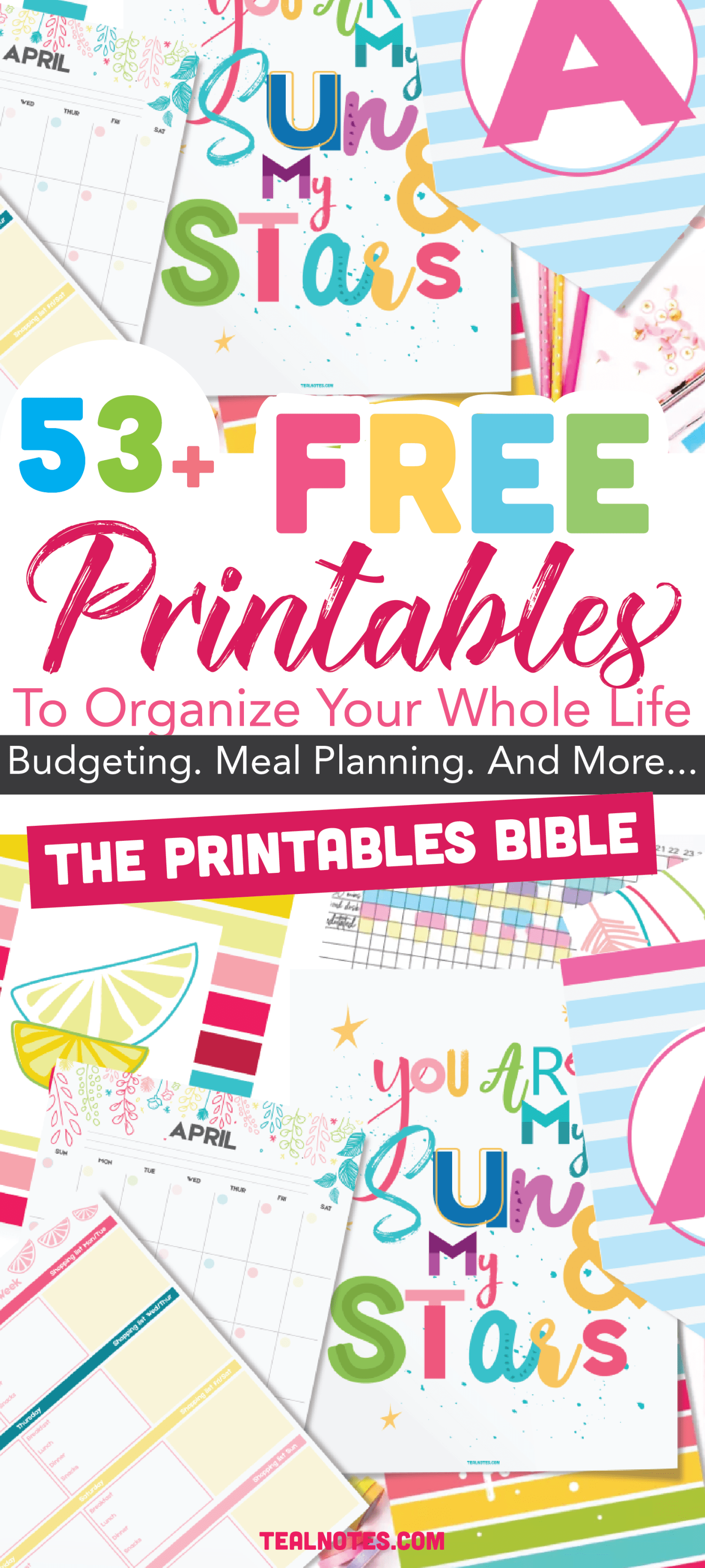 53+ Of The Most Beautiful FREE Printables To Organize Your Whole Life The Printables BIBLE is part of Life organization printables, Printables, Free planner pages, Free planner inserts, Planner printables free, Free printables - Organization printables are a great way to make sure you organize your home and life as best as possible  Here is an awesome list of cute home organization printables to make sure you stay tidy and clutter free!