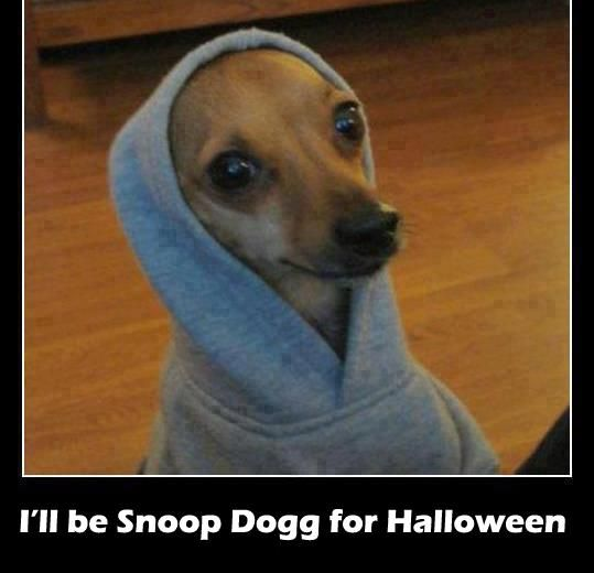 I'm gonna be Snoop Dogg for Halloween