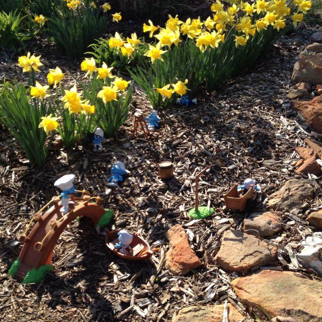Smurfs in my garden