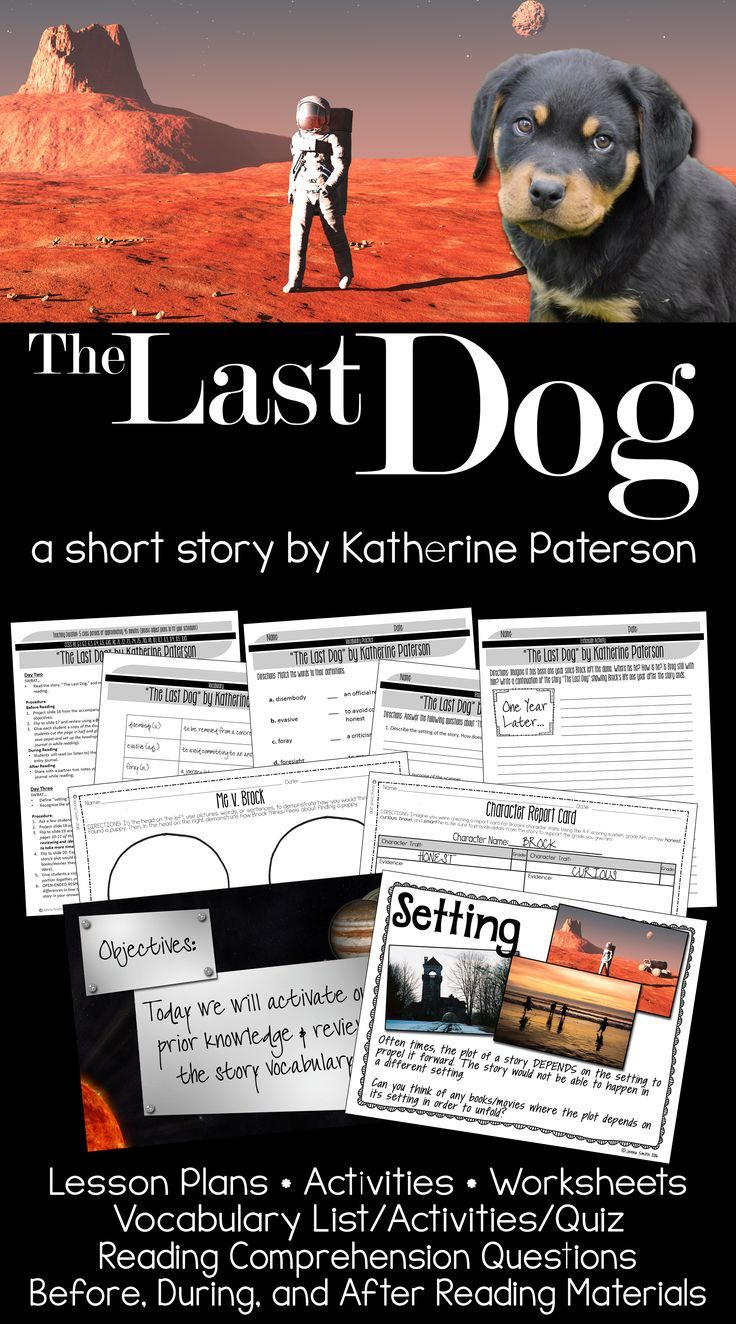 The Last Dog by Katherine Paterson | Reading comprehension ...